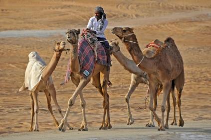 Abu Desert walk