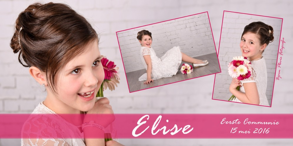 bedanking Elise 2