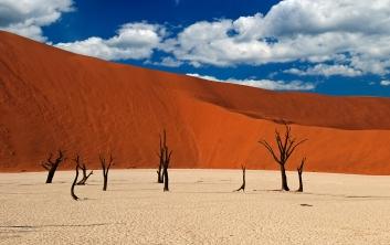 Namibian dead vlei