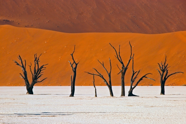 Namibië Dead vlei 2