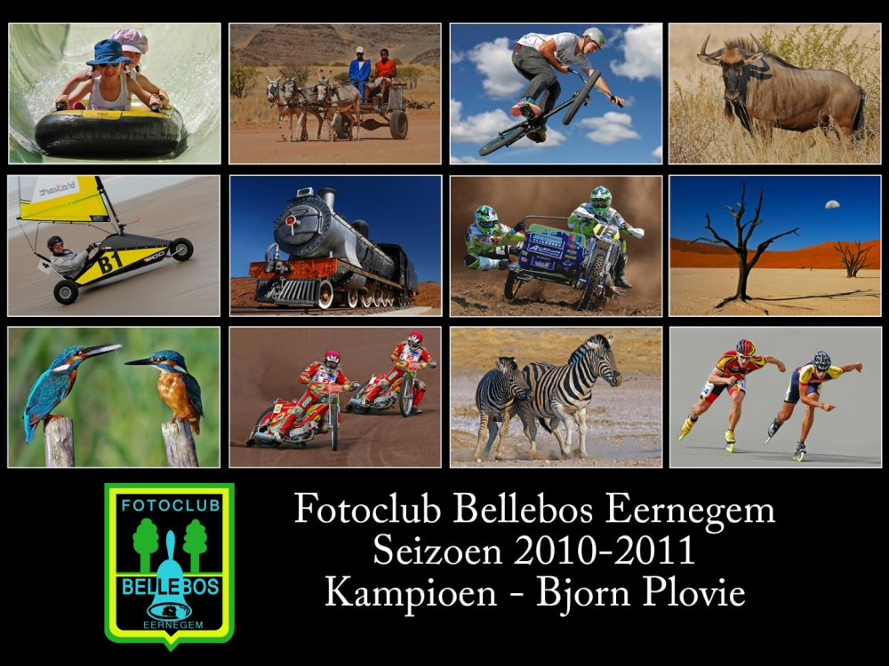 bellebos 2010-2011
