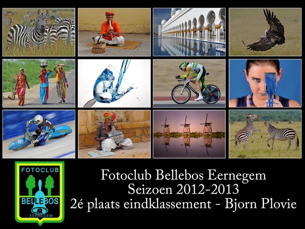 bellebos 2012-2013
