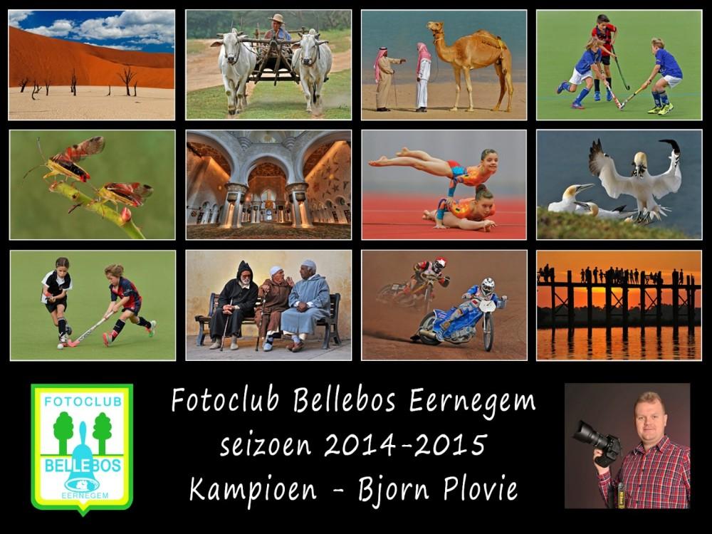 bellebos 2014-2015