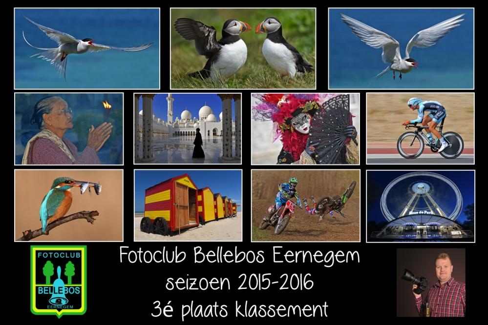 Bellebos klassement