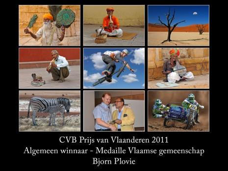 CVB vlaanderen 2011