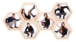 hexagon batsleer bussche